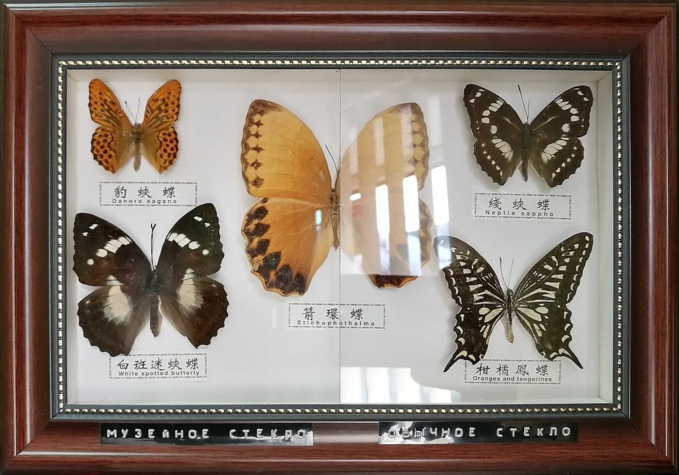 Музейное безбликовое стекло